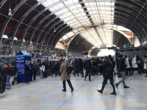 London Paddington Search Engine Optimisation SEO WordPress UK Consultant Freelancer