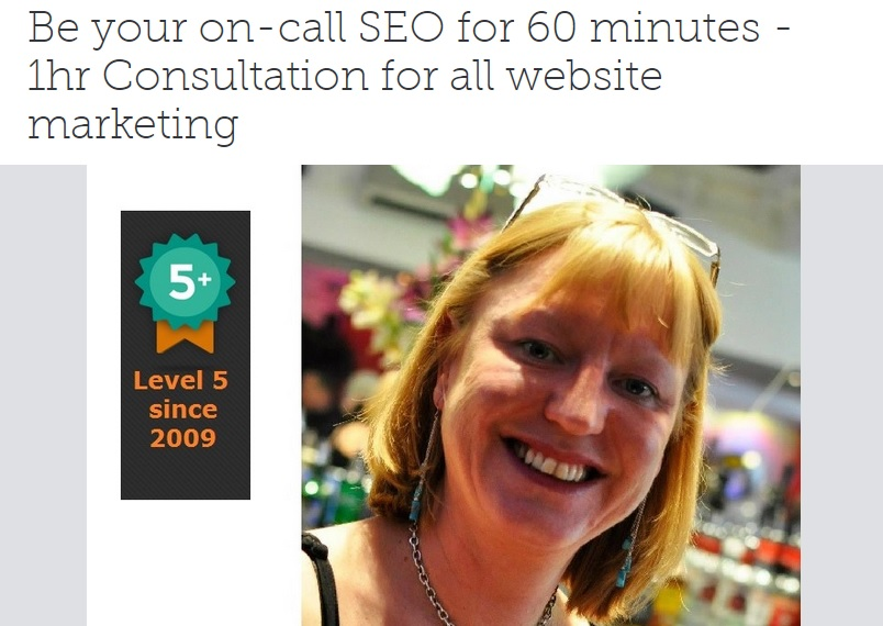 Freelance SEO UK - SEO Lady Nina Payne Freelance Training UK