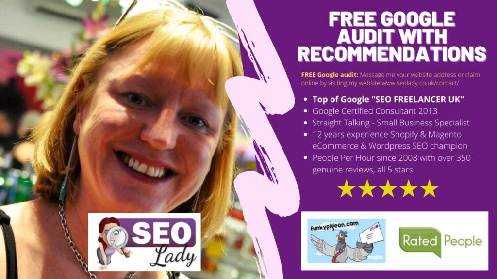 Free Google SEO Audit Freelancer Consultant Zoom WordPress Magento eCommerce Shopify