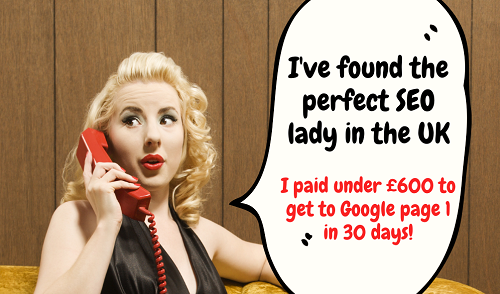 Nina Payne WordPress Expert SEO Lady 30 Day Booster Ranking Google Search Phrases Freelance Consultant UK