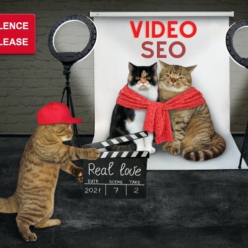 VSEO VIDEO SEO YOUTUBE GOOGLE RANKING ALGORITHM SERPS SEARCH ENGINE PHRASE KEYWORDS